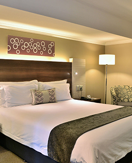 birchwood hotel room with one bed
